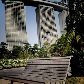 Leave the world behind by Janette Ho - Buildings & Architecture Office Buildings & Hotels ( bench, object, furniture, public )