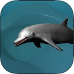 Coral Reef Dolphin Simulator 1.0 Apk