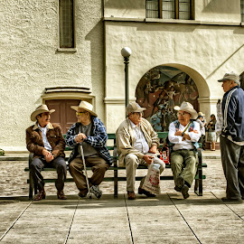 Old Men Telling Tales  by David Hammond - People Street & Candids ( hats, talking, old, sitting, hdr, street, los angeles, candid, men, group, Urban, City, Lifestyle,  )