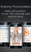 Screenshot of Anatomy Pronunciations