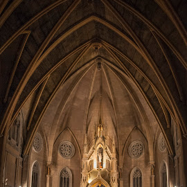Catedral Sta. Maria Auxiliadora, Mexico DF by Christian Diboky - Buildings & Architecture Places of Worship ( santa julia, df, mexico city, church, mexico, neo-gothic, auxiliadora, virgen, maria, catedral, gustavo madero, anahuac,  )