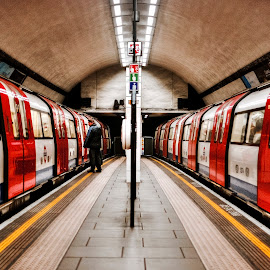 twin trains by Kevin Towler - Transportation Trains ( twin, uk, london, station, train, travel, underground )