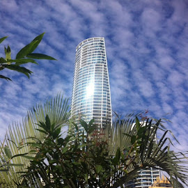 Gold Coast City Building by Keir Bonello - Buildings & Architecture Office Buildings & Hotels ( structure, building, gold coast, amateur, hotel )