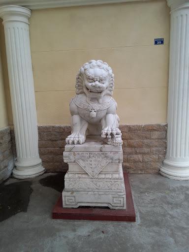戒毒所狮子
