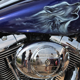 Wolf by Dean Thorpe - Transportation Motorcycles