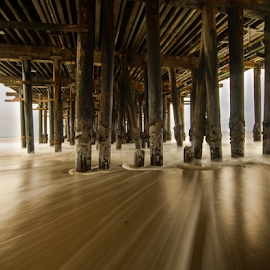 Under the wharf with dreamy surf by Kathy Dee - Buildings & Architecture Other Exteriors ( water, sand, dreamy, california, ocean, beach, piling, vacation, santa, cruz, brown, wharf, surf,  )