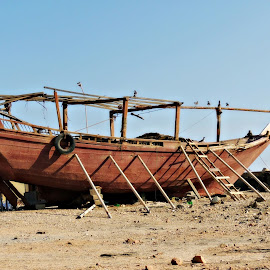 Dhow on the Beach by Tamsin Carlisle - Transportation Boats ( dhow, ladder, wooden, arab, oman, dhofar, beach, mirbat, boat, coast )