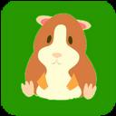 Hamster mobile app icon