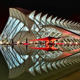 La ciudad de las ciencias y las artes by Annet van Raalten - Buildings & Architecture Other Exteriors ( valencia, spain )