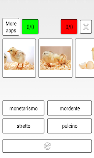 Learn Spanish words - screenshot