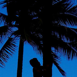 Climber by Michael Griffin - Novices Only Portraits & People ( coconut, luau, trees, boy, climber )
