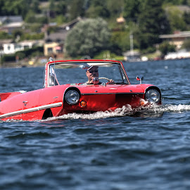 John an his Amphicar by Dennis McClintock - Transportation Boats ( red, cars, outdoors, transportation, boats boating, summertime )
