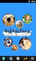 Screenshot of BubbleFace