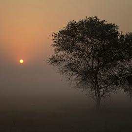 by Deep Roy - Landscapes Sunsets & Sunrises