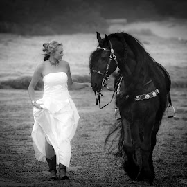 Walk with Me by Shakenimages Ken - Animals Horses