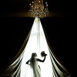 Strike a Pose by David Terry - Wedding Bride ( bouquet, bridal, elegant, silhouette, wedding, dramatic, drapes, bride, curves )