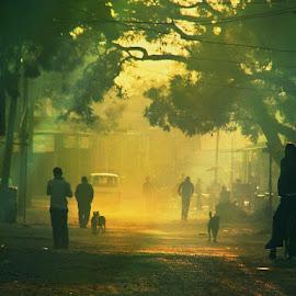 A Foggy Day by Vijay Sharma - People Street & Candids ( foggy, street, street scene, people, street photography, mood, mood factory, holiday, christmas, hanukkah, red, green, lights, artifical, lighting, colors, Kwanzaa, blue, black, celebrate, tis the season, festive )