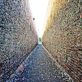 Gum Wall by Barbara Brock - City,  Street & Park  Street Scenes ( gum on the wall, unusual city walls, alleyway, alley )