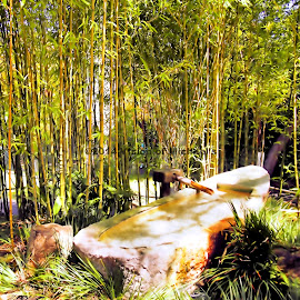 Bamboo Watering well by Michael Montgomery - Landscapes Travel ( kingdom, nature, art, landscape, photography )