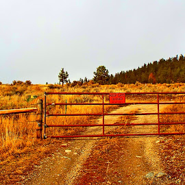 Private Property by Trapline Photography - Transportation Roads ( private property, dirt road, object, road, gate )