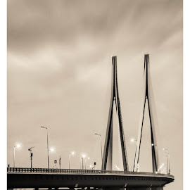 Bandra Worli Sealink by Sankalp ManTree - Buildings & Architecture Bridges & Suspended Structures ( mumbai, bwsl, bridge, worli, bandra, sealink )