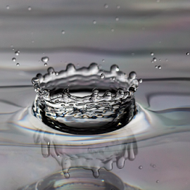 The Water Crown!  by Wang Hao Ming - Nature Up Close Water ( water, splash, drop, beauty, close up, water crown )