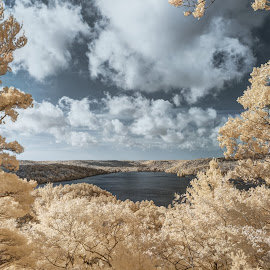 by Stan Klasz - Landscapes Forests