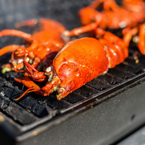 Grilled Lobster with Lemon-Shallot Butter