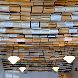 Book ceiling by Chrissy Almaraz - Buildings & Architecture Other Interior
