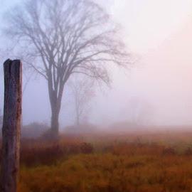 by Rachelle MacDonald - Landscapes Weather
