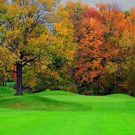 Michigan Fall Golf by Frank Sciberras - Sports & Fitness Golf ( michigan, fall leaves, golf courses, nature, colors, golf, fall in michigan,  )