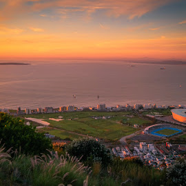 by Randall Langenhoven - City,  Street & Park  Historic Districts ( seapoint, southafrica, sunset, stadium, capetown, landscape )