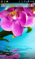 Screenshot of Orchids In Water IV