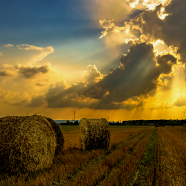 Sun through the clouds by Manuela Dedić - Landscapes Prairies, Meadows & Fields ( wheat, clouds, straw, sun,  )