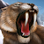 Carnivores: Ice Age file APK for Gaming PC/PS3/PS4 Smart TV