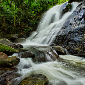 The Waterfall by Charliemagne Unggay - Landscapes Waterscapes ( nature, waterscape, waterfall, trees, rocks )