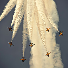Singapore Airshow 2014 by Crispin Lee - News & Events World Events ( air, transport )