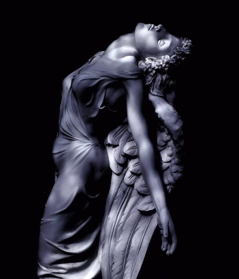 Garden Angel by Liz Crono - Black & White Objects & Still Life ( angel, statue, b&w, garden )