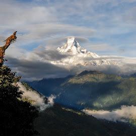 Machhapuchhre Lit. Fish Tail by Leon Efimov - Landscapes Mountains & Hills ( fish tail, annaprurna, mountain, range, himalayas, nepal )