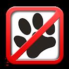 Cat Teaser icon