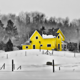 Yellow House by Lee Bodson - Buildings & Architecture Homes ( winter snow, home, yellow, house )
