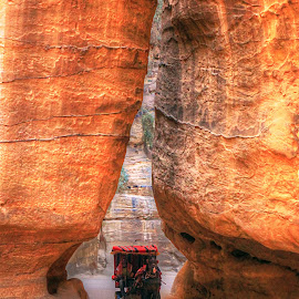 Petra taxi by Peter Kennett - Landscapes Travel ( tourist, desert, taxi, buggy, jordan, horse, canyon, petra )