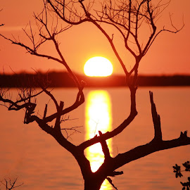 Chokoloskee Bay  by Kathy Bahrs- Daniels - Landscapes Sunsets & Sunrises