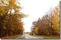 autumn road out of town