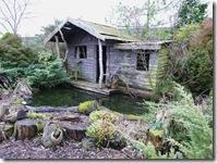 paddock watwe garden1