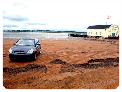 parking lot on a beach