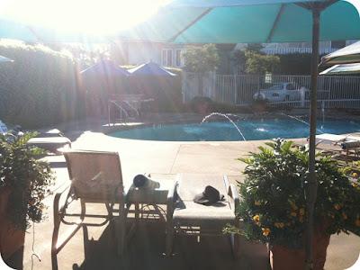 Tides Laguna Pool
