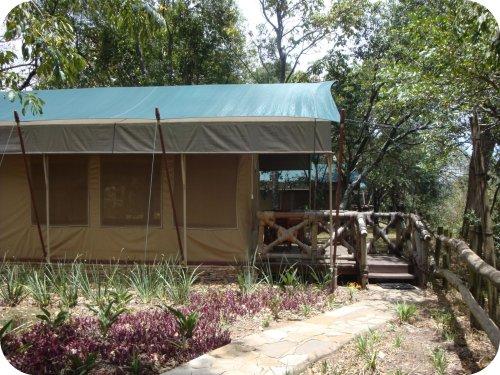 tent at fairmont masai mara