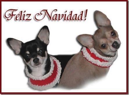 blogdeimagnenes.com gifs navidad (5)