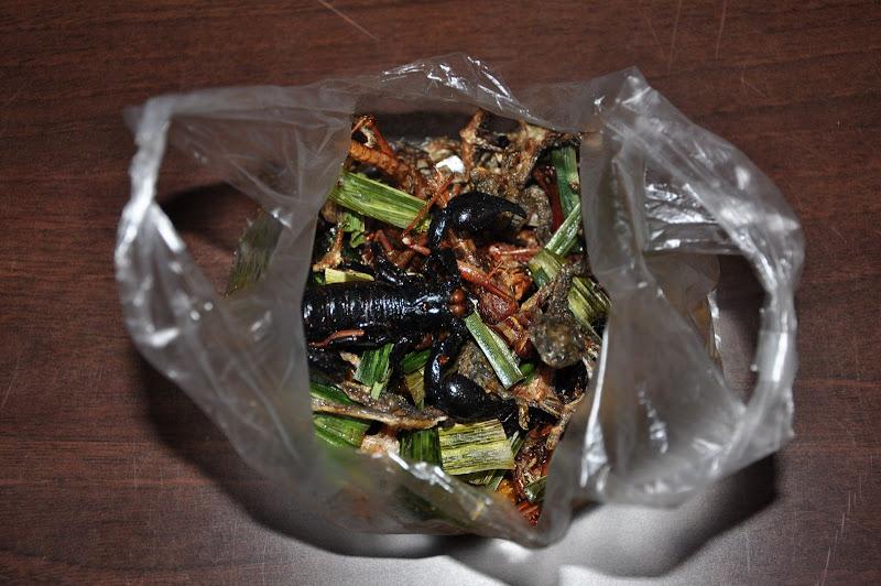 Пакетик жареных насекомых и лягушек